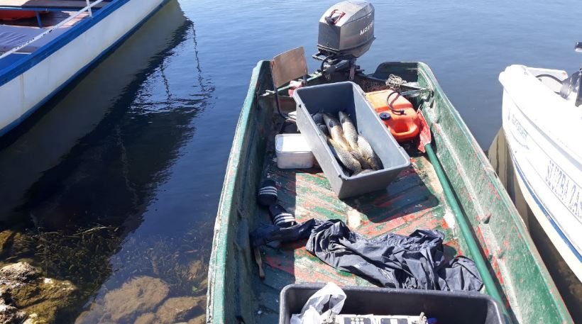 Nelegalni izlov ribe na Skadarskom jezeru
