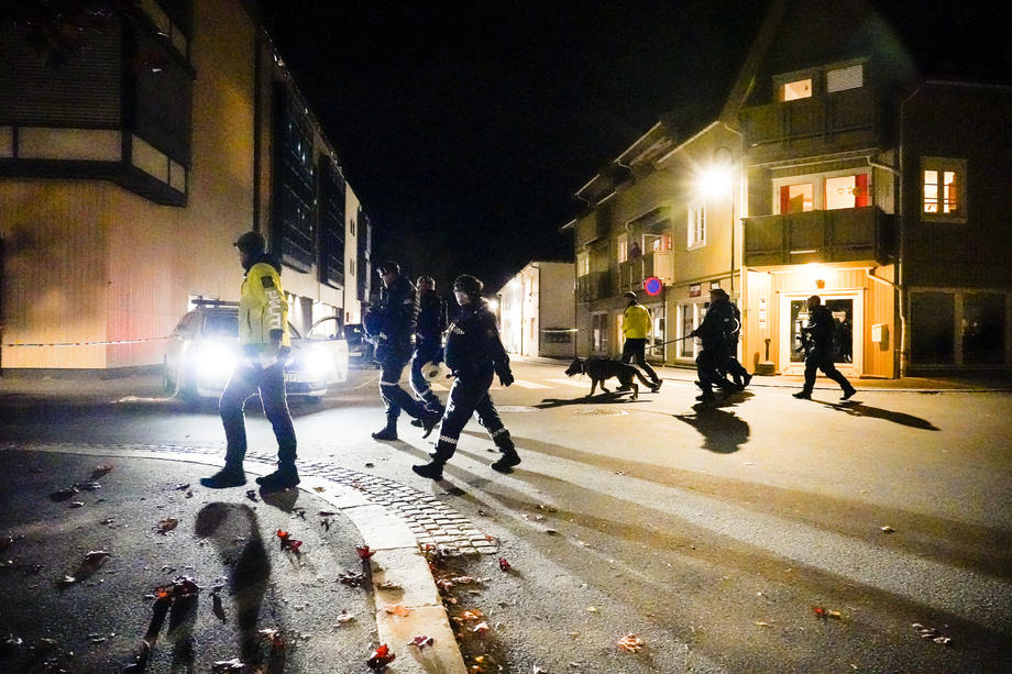 Napad u Norveškoj: Lukom i strijelom ubio pet osoba