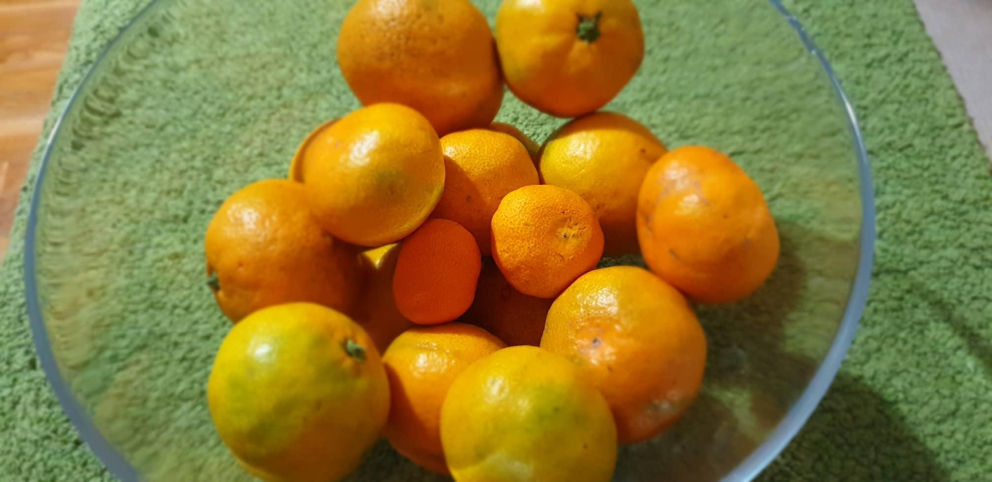 Sezona je mandarina: Sedam razloga zašto ćete ovo voće jesti svaki dan