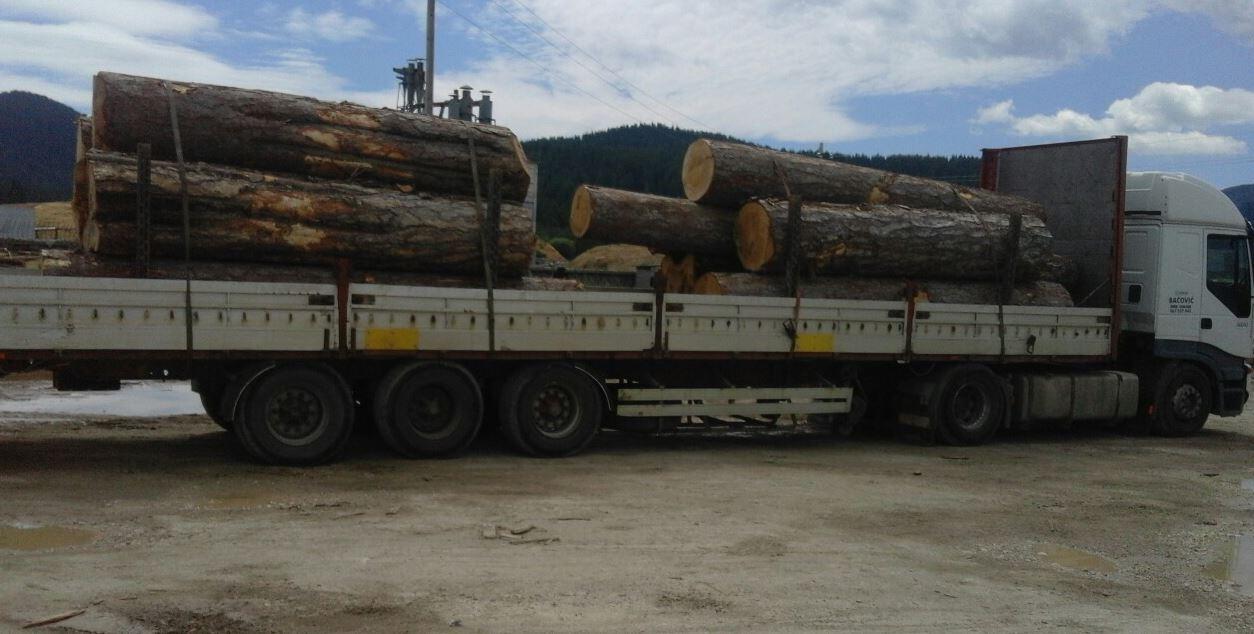 Zaplijenili 24 kubika drvne građe
