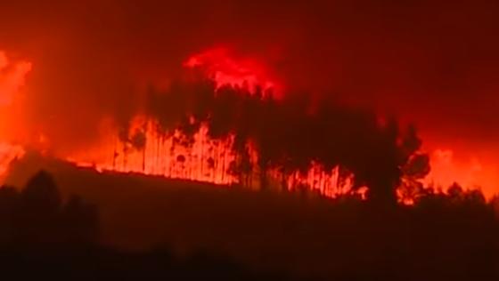 Stravičan požar u Portugalu: Stotine vatrogasaca na terenu, uhvaćen osumnjičeni za podmetanje požara