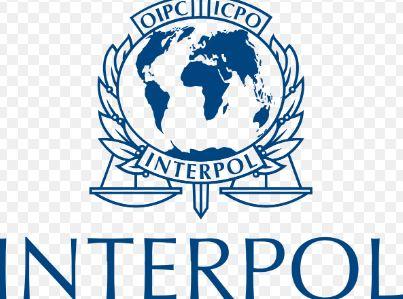 Francuska odobrila azil ženi bivšeg šefa Interpola