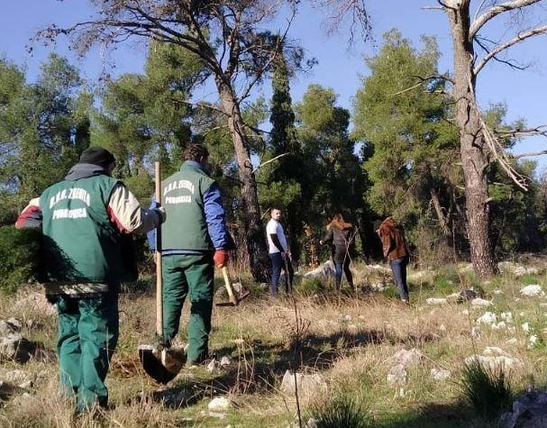 Još jedna akcija pošumljavanja u park-šumi Ljubović