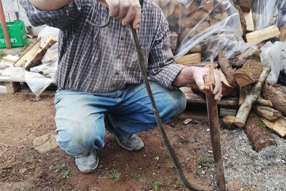 Uhvaćena zmija na Zabjelu