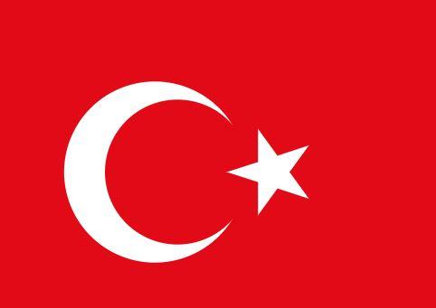 Turska: Šaljemo kućama pripadnike ID