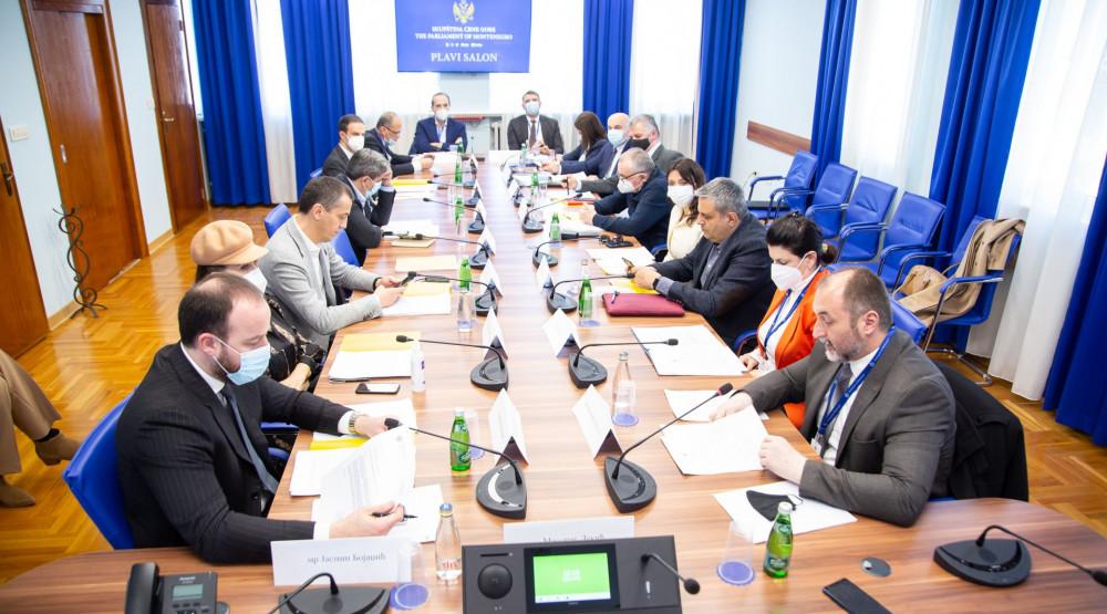 Odbor: Nijesu se stekli uslovi za mišljenje o predlogu kandidata za ambasadore