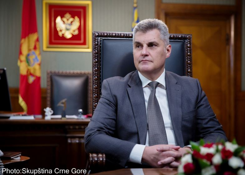 Brajović na Samitu predsjednika EP sa čelnicima parlamenata ZB