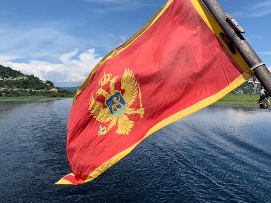 Istraživanje: Evo koliki državni IQ ima Crna Gora - manji od Slovenaca, Hrvata...