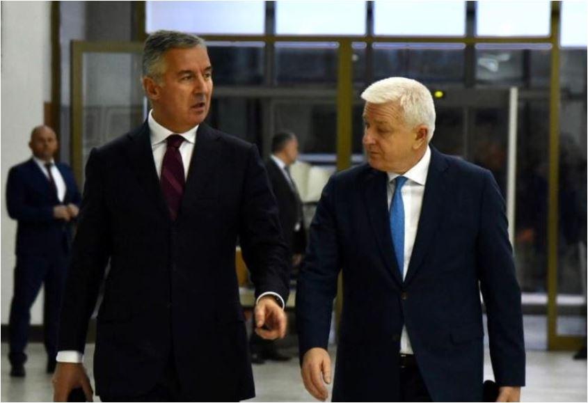 Izabrano Predsjedništvo DPS-a, Gvozdenović politički direktor, Roćen predsjednik Političkog savjeta