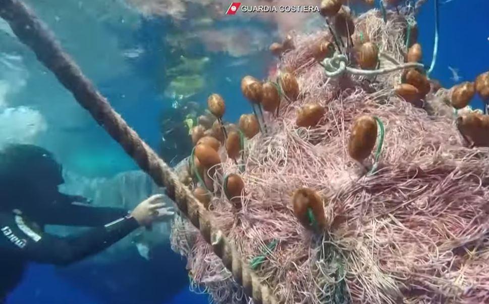 Italijanski ronioci spasili kita upletenog u ilegalne ribarske mreže