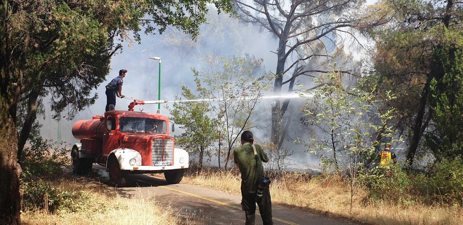 Požar na Gorici trenutno pod kontrolom, očekuju dodatnu podršku nadležnih državnih organa