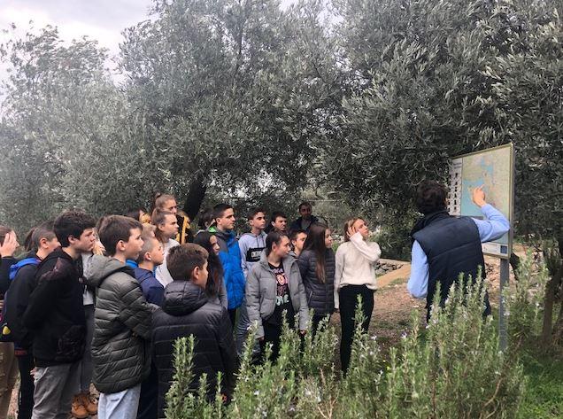 Tivat: Posjeta prvoj organskoj farmi maslina