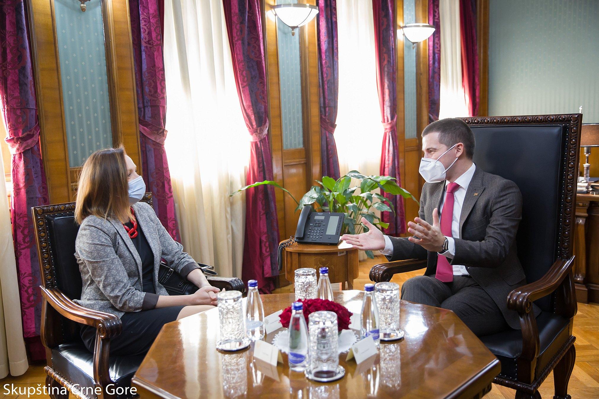 Bečić i Mihailović: Podrška Skupštine civilnom sektoru od ključnog značaja