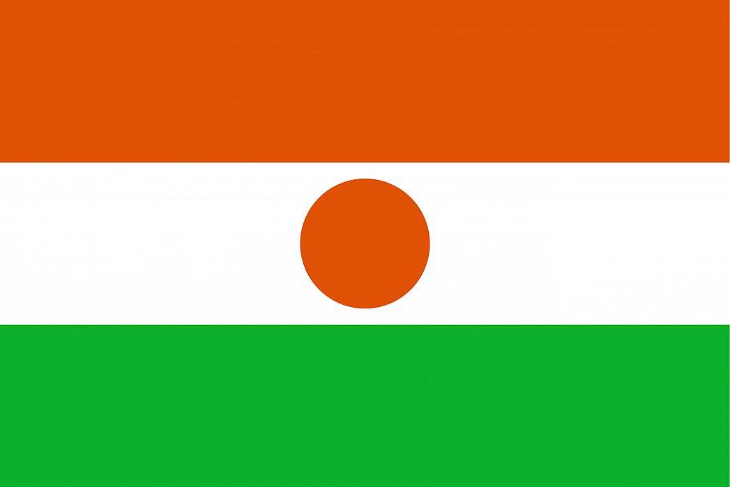 Niger: U zasjedi ubijeno 17 vojnika
