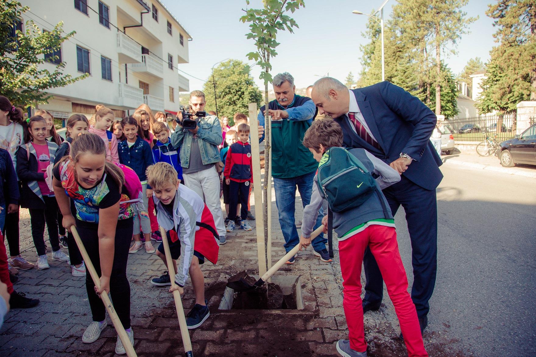 Na Cetinju posadili više od 200 stabala