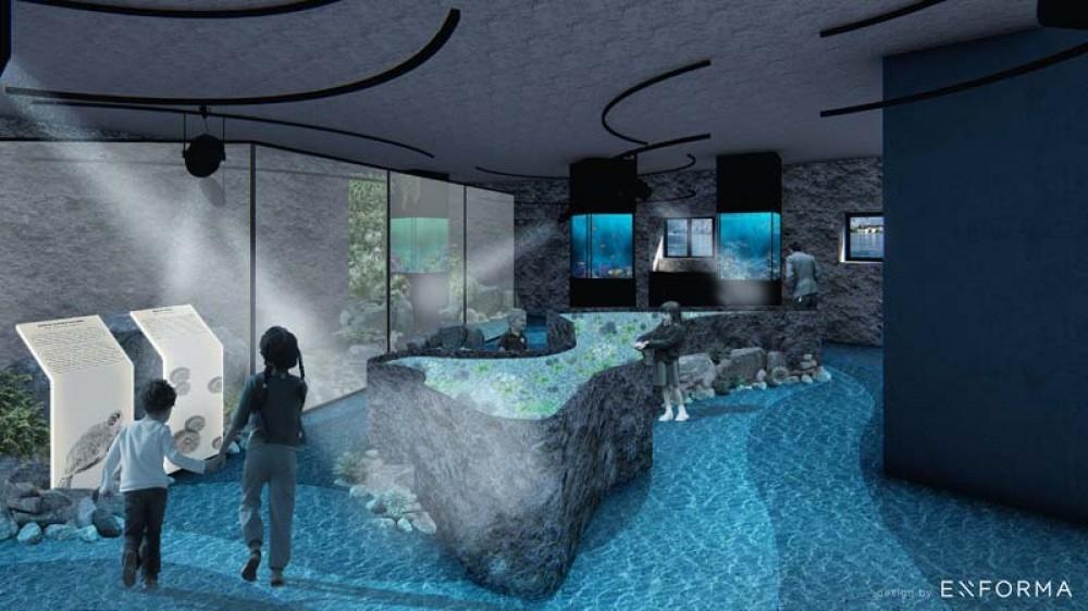 Evo kada bi mogao biti otvoren prvi Akvarijum u Crnoj Gori