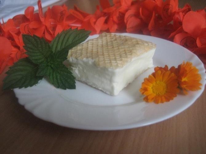 Sladoled u oblandi: Omiljena poslastica koja se brzo sprema i još brže pojede