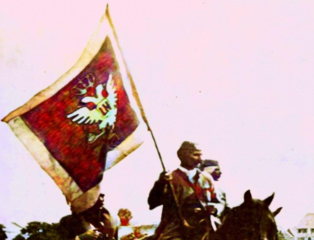 O zastavi i grbu Knjaževine Crne Gore (2)