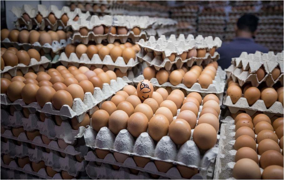 Načini da otkrijete jesu li jaja svježa