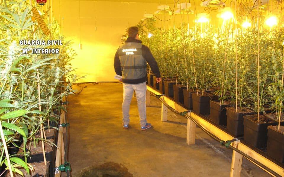 Detalji hapšenja: Savović i još trojica uhvaćeni sa 2.685 stabljika marihuane