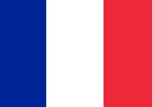 Francuska zatražila hitan sastanak antidžihadističke koalicije