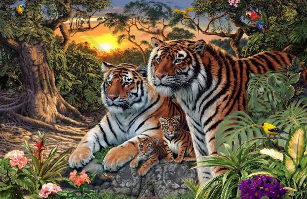 Ne, nijesu samo četiri tigra na fotografiji - pronađite ostale!